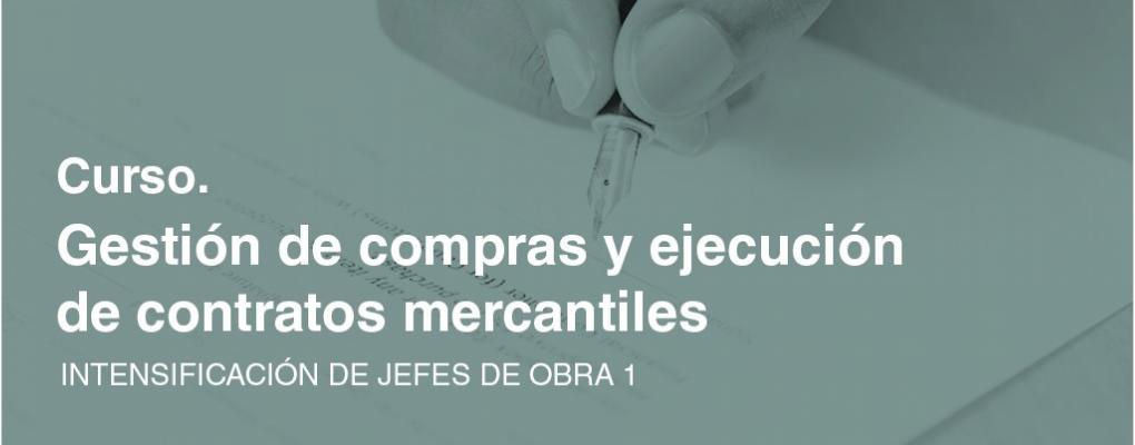 Intensificación de jefes de obra 1. Curso teórico - practico de gestión de compras y ejecución de contratos mercantiles. 5ª ed.