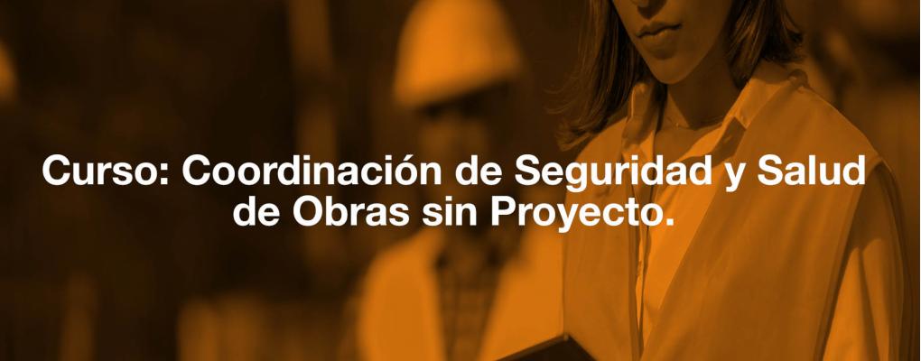Curso Coordinación de Seguridad y Salud de Obras sin Proyecto.