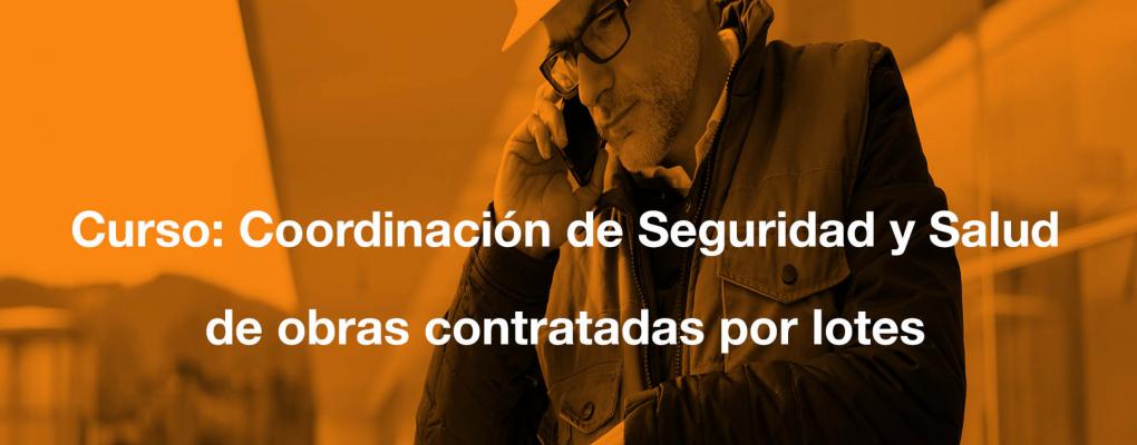 Curso Coordinación de Seguridad y Salud de obras contratadas por lotes